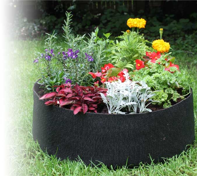 Container Gardening With Smart Pots
