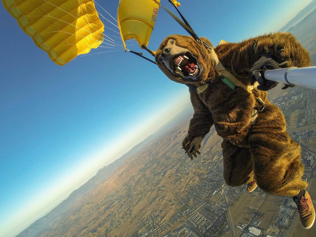 круги под прикольные картинки прыжок с парашютом здоровье