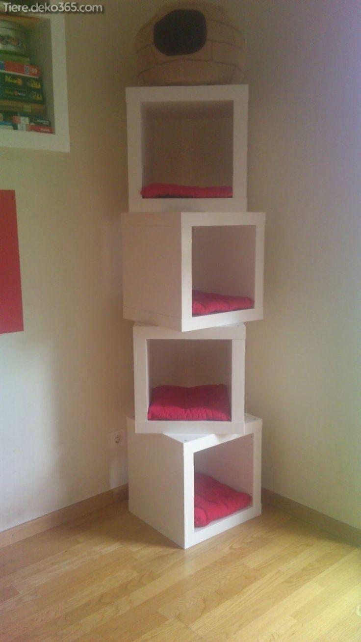 Schone Purrfect Diy Projekte Fur Jedes Katzenbesitzer Cat Room Diy Ikea Cubes Cat Room