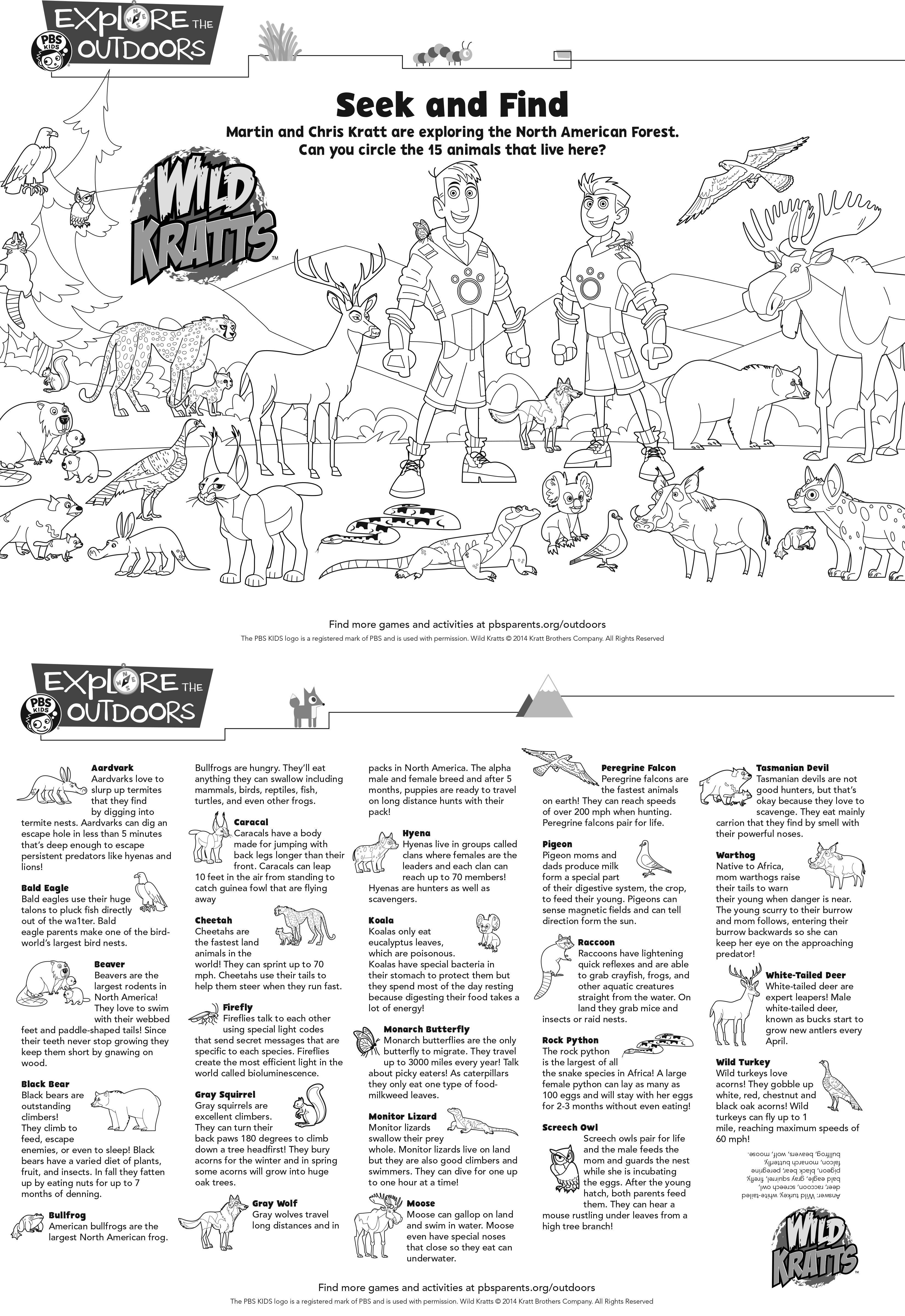 Wild Kratts Seek And Find Activity Sheet Wildkratts