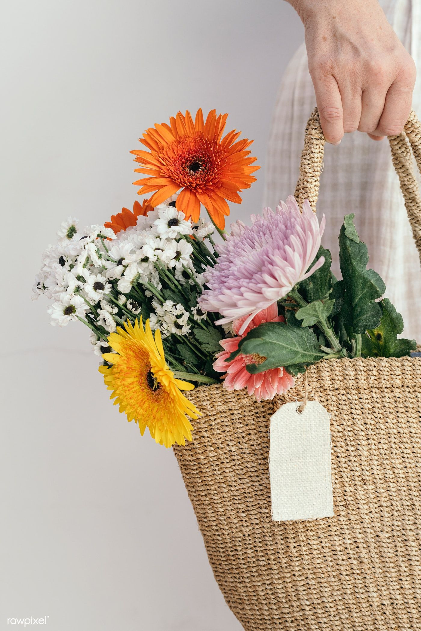 Girl Carrying A Bouquet In Her Bag Premium Image By Rawpixel Com Teddy Rawpixel Tropical Flowers Tropical Flowers Bouquet Gerbera Daisy Bouquet