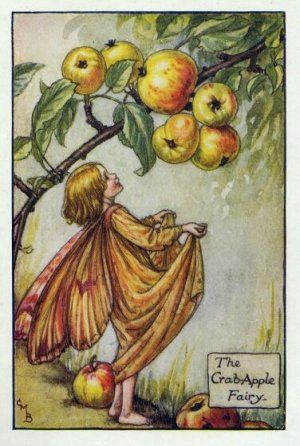 Crab-Apple Flower Fairy Print c.1927 Fairies by Cicely Mary Barker