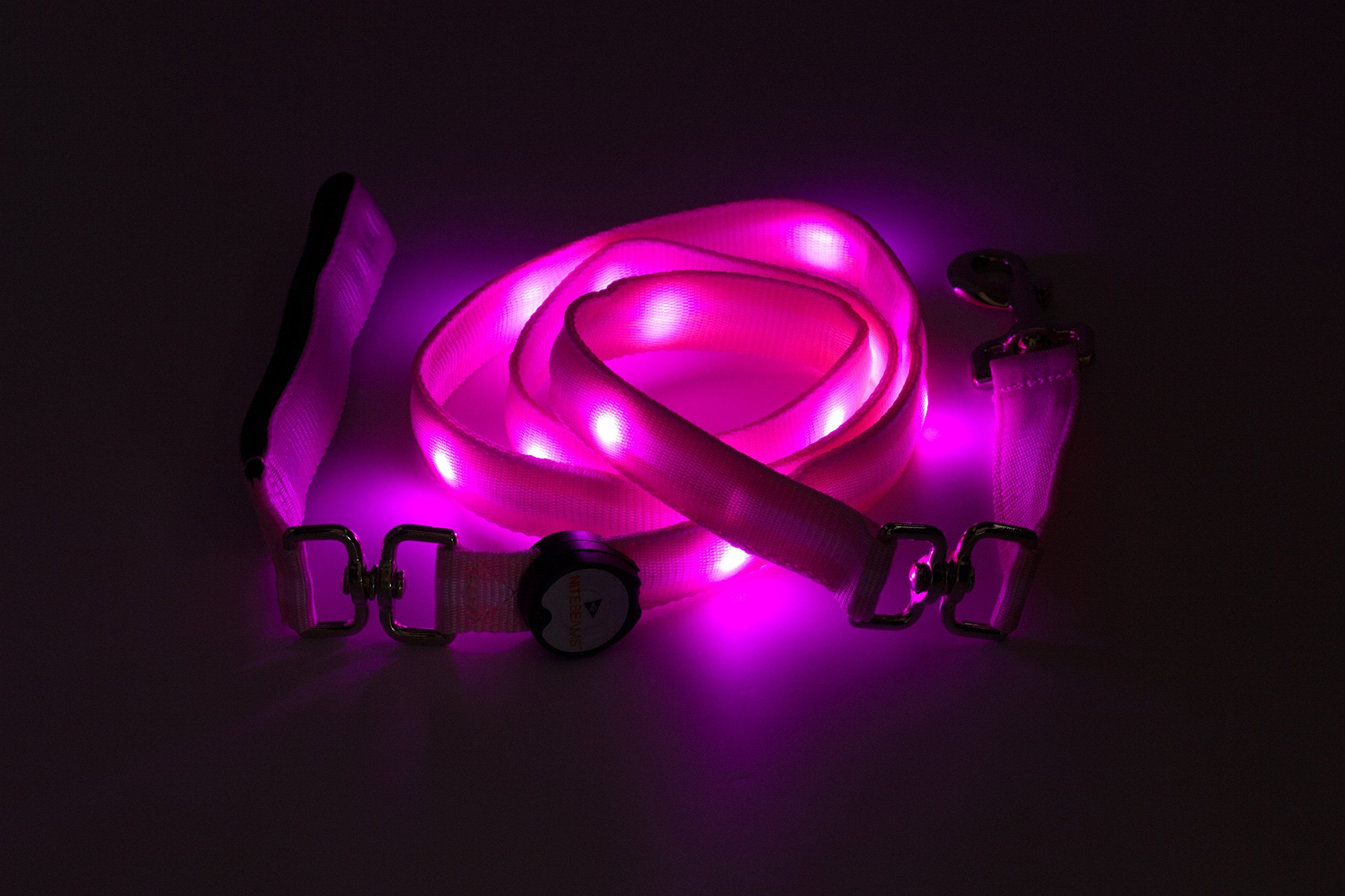 """Nite Beam LED Pet Leash (Pink-Med/Large 1""""-6') -- Awesome products selected by Anna Churchill"""
