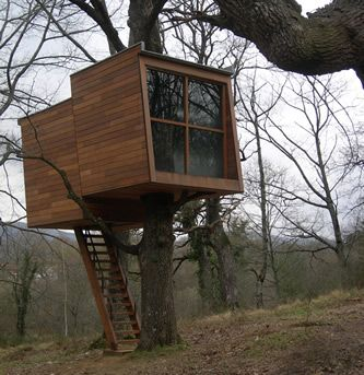 Deja Que La Luz Natural Llene Tu Casa Del árbol Diseños De La Casa Del árbol Casa Del Arbol Casa Del árbol De Niños