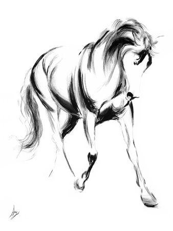 Amy Goodman - Majestic II - Horse Sketch Giclee