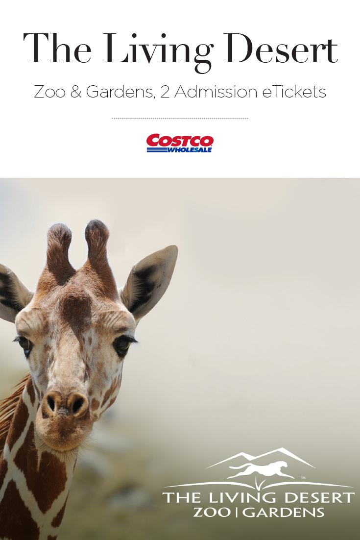 efb0ef6317859eb4dee3fdcaaa03f7ae - The Living Desert Zoo & Botanical Gardens
