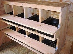 inclusdanslepoulailler petite ferme pinterest pondoir poulaillers et pondeuse. Black Bedroom Furniture Sets. Home Design Ideas
