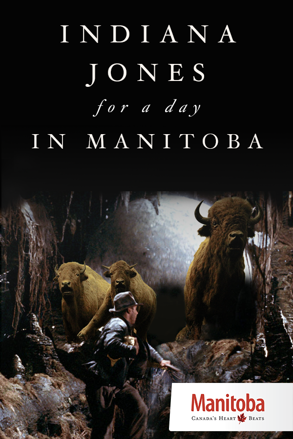 Meet thousands of frenzied snakes, decipher ancient writing on rock walls, dig for fossils and venture into cavernous depths. Manitoba's natural wonders match any adventure had by film hero and archaeologist Indiana Jones. www.manitobahot.com #exploremb
