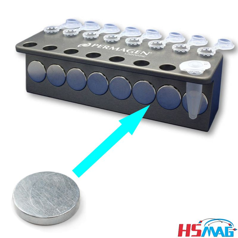 Ndfeb Disc Magnets For Microtube Magnetic Stand Magnets By Hsmag Neodymium Magnets Disc Magnet Magnets