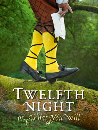 the importance of malvolio's role in The character of malvolio is treated too cruelly for twelfth night to be cl  997  words - 4 pages the importance of madness as a theme in twelfth night by  william  the function of disguise in twelfth night by william shakespeare.