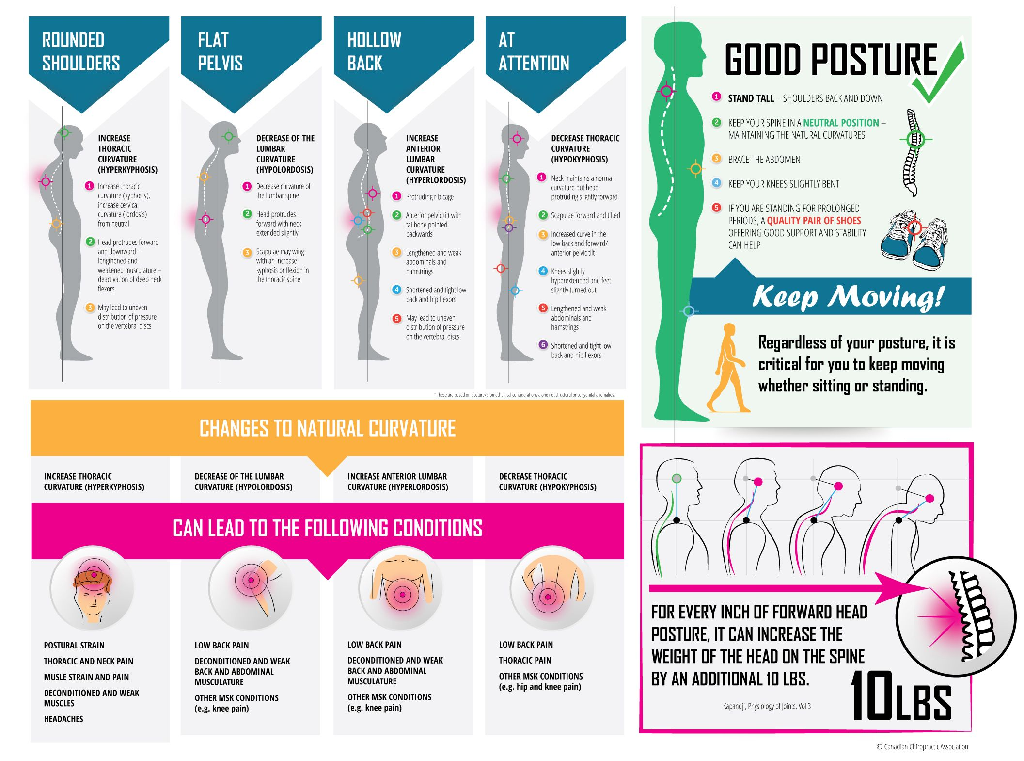 Orange county ca s premier non surgical spinal decompression clinic - October 16 Is World Spine Day Infographic The Effects Of Poor Posture On The
