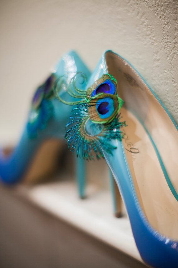 Pin By Nikolett Willemsen On Something Old Something New Peacock Shoes Shoe Clips Clothes Horse