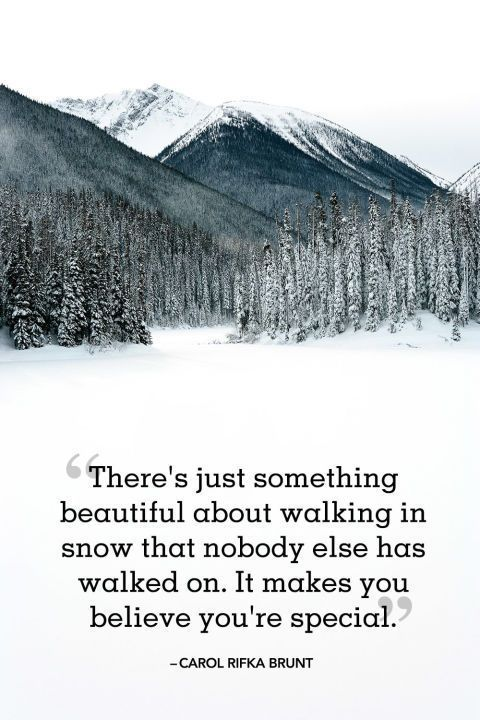Winter Quotes to Help You See the Wonder in Every Snowfall