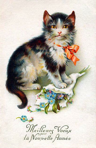 Vintage Cat New Year Postcard
