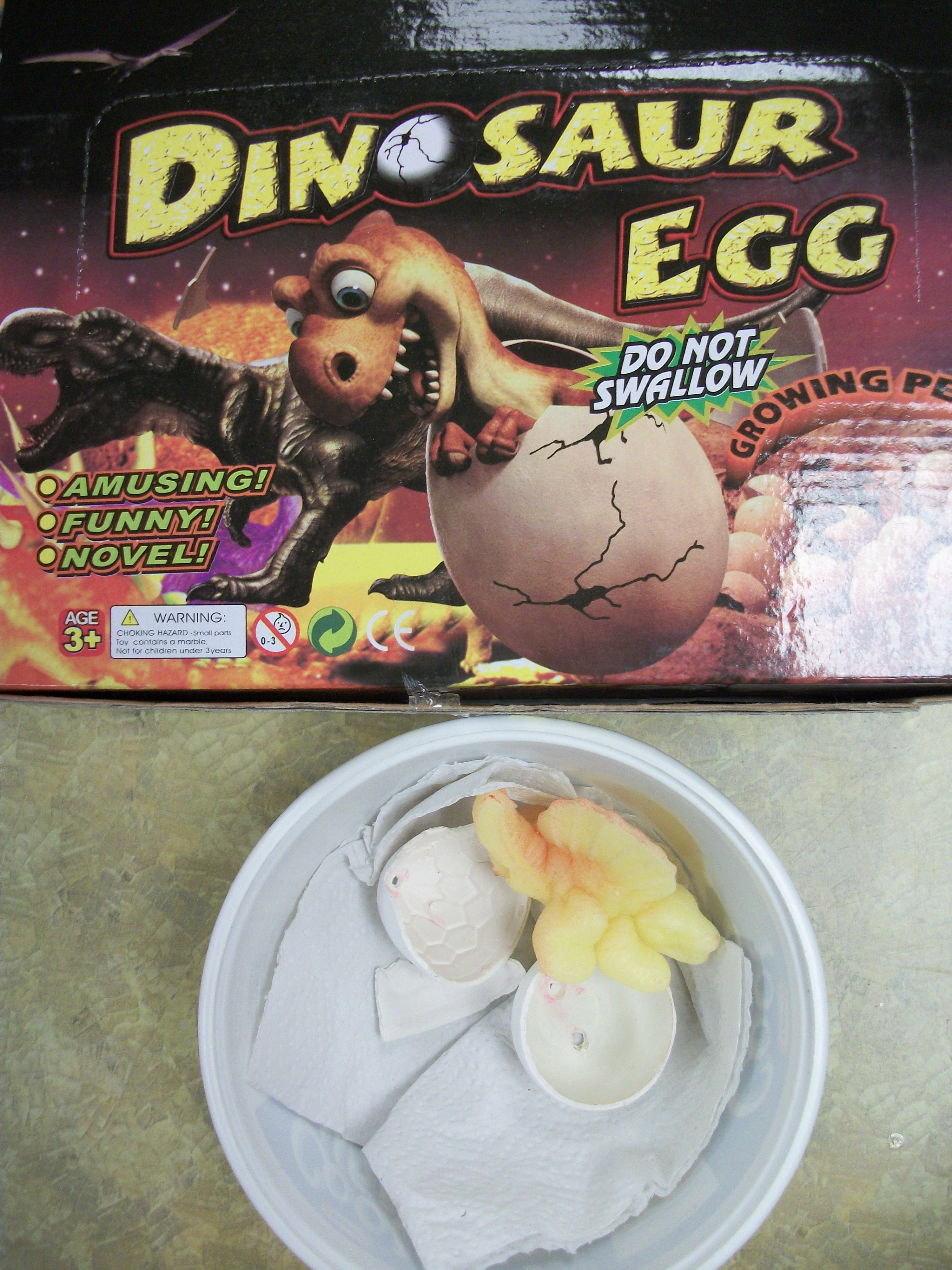 Dig Into Reading 2013:  Hatch a dinosaur egg and watch your pet dino grow!