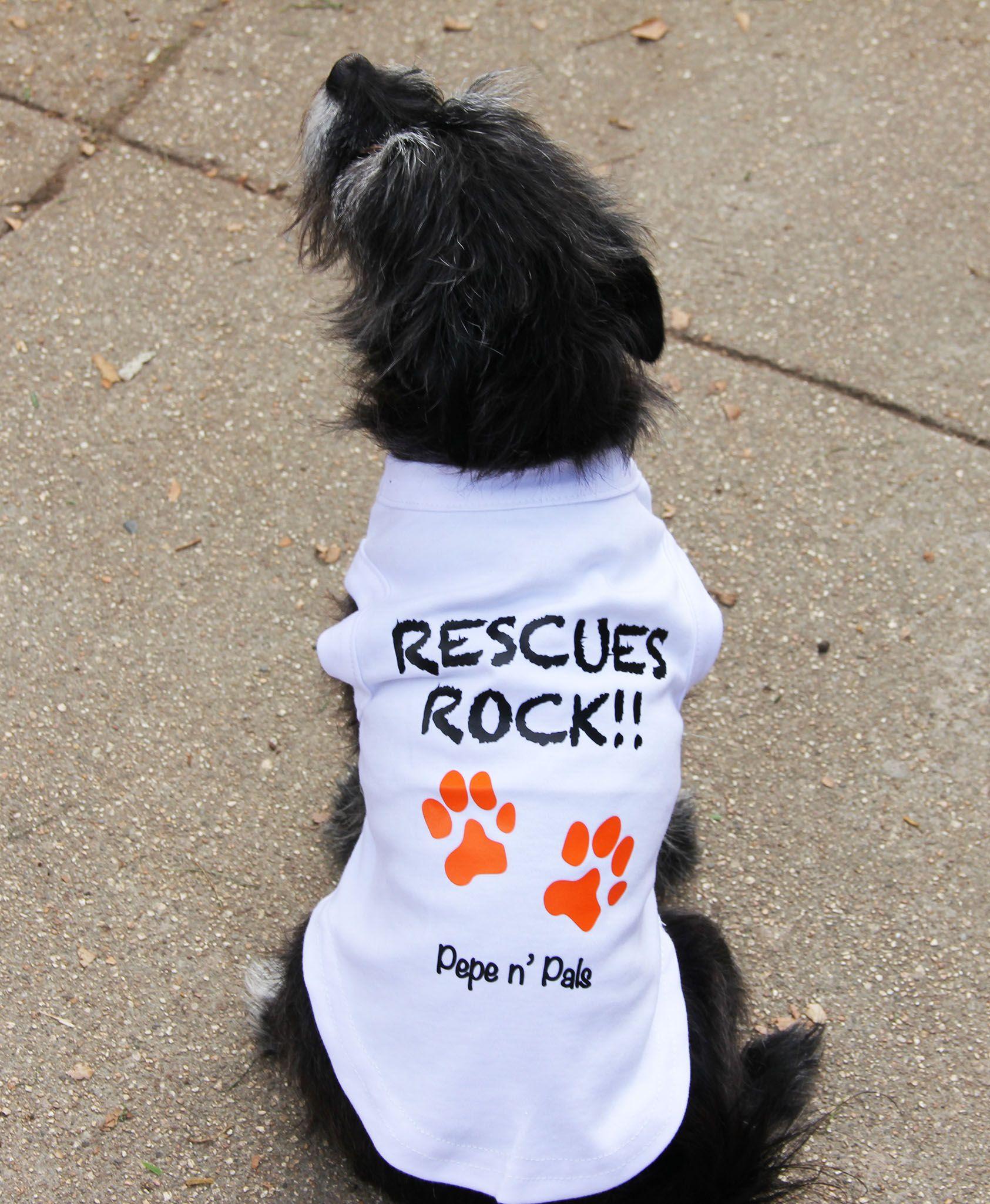 Pin On Dogtshirt Dog Animals Dog Quotes