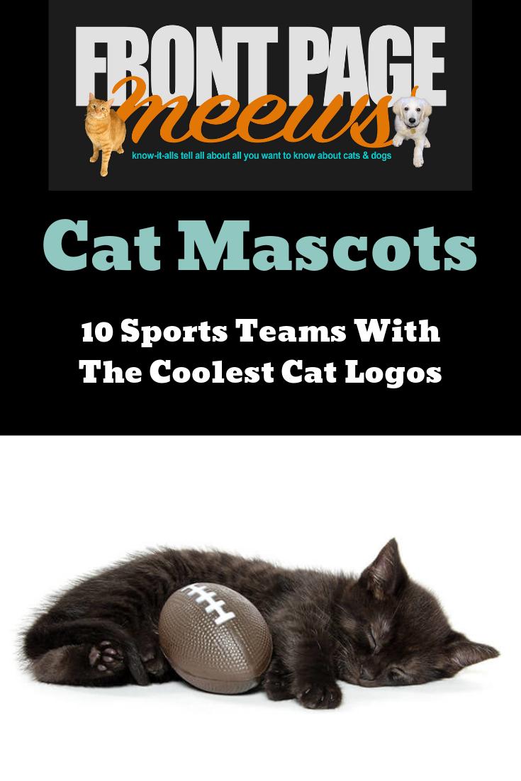Cat Mascots Top 10 Coolest Cat Logos In Major Sports Cats Cat Logo Cool Cats