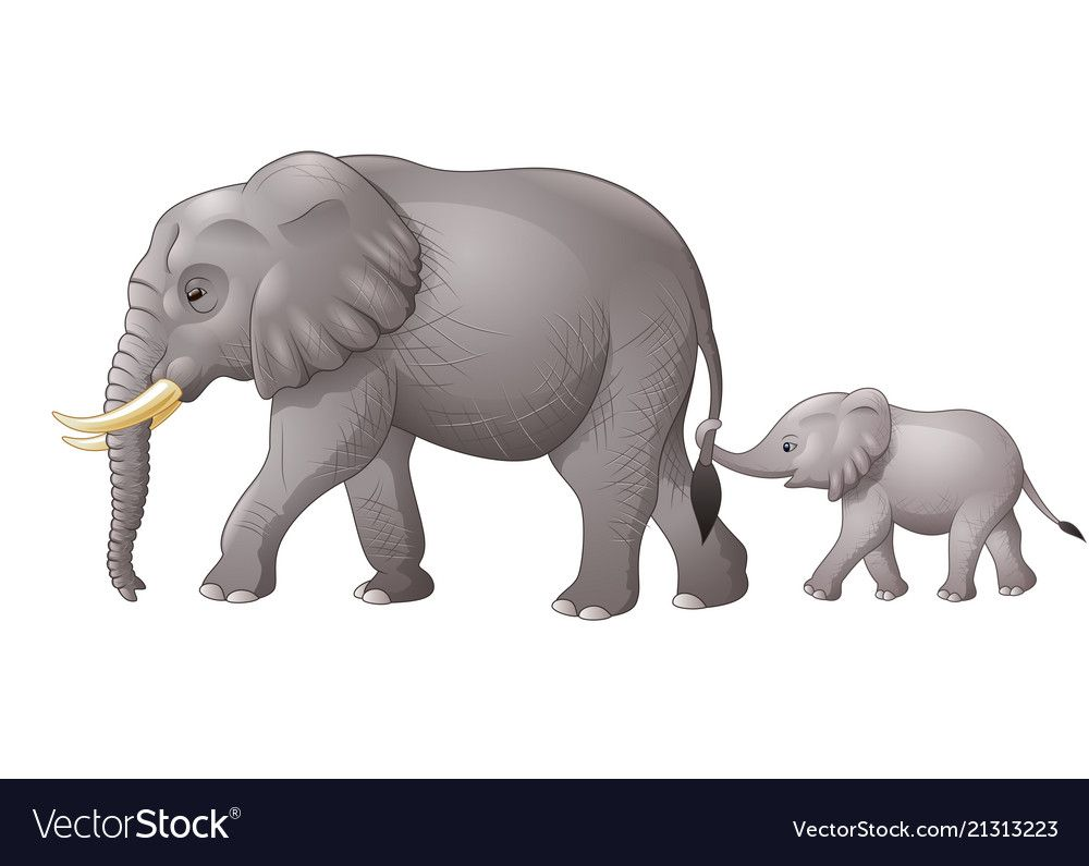 Cute Mother And Baby Elephant Royalty Free Vector Image Baby Elephant Drawing Mother And Baby Elephant Baby Elephant Cartoon