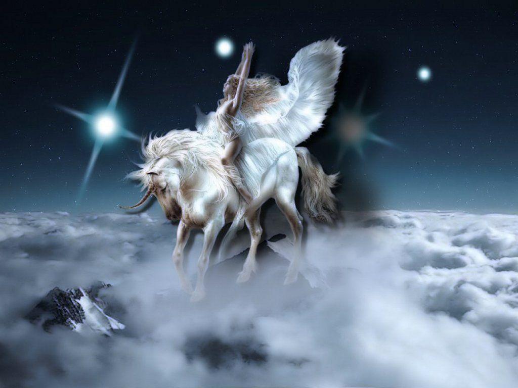 Best Wallpaper Horse Unicorn - efb4fafff88c5f37f4645f22d110b97b  Pic_288495.jpg