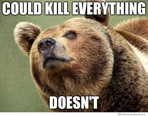Good Guy Bear Meme Funny Bears Bear Meme Animal Puns