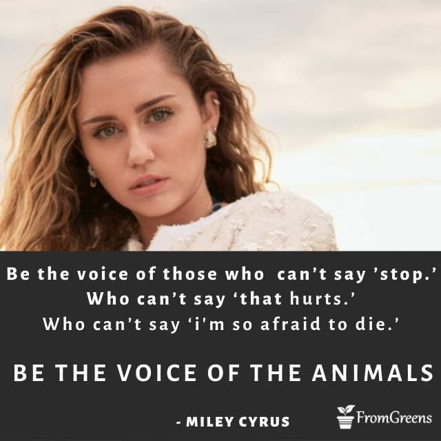 Miley cyrus Inspirational Quotes Biggest Gallery for