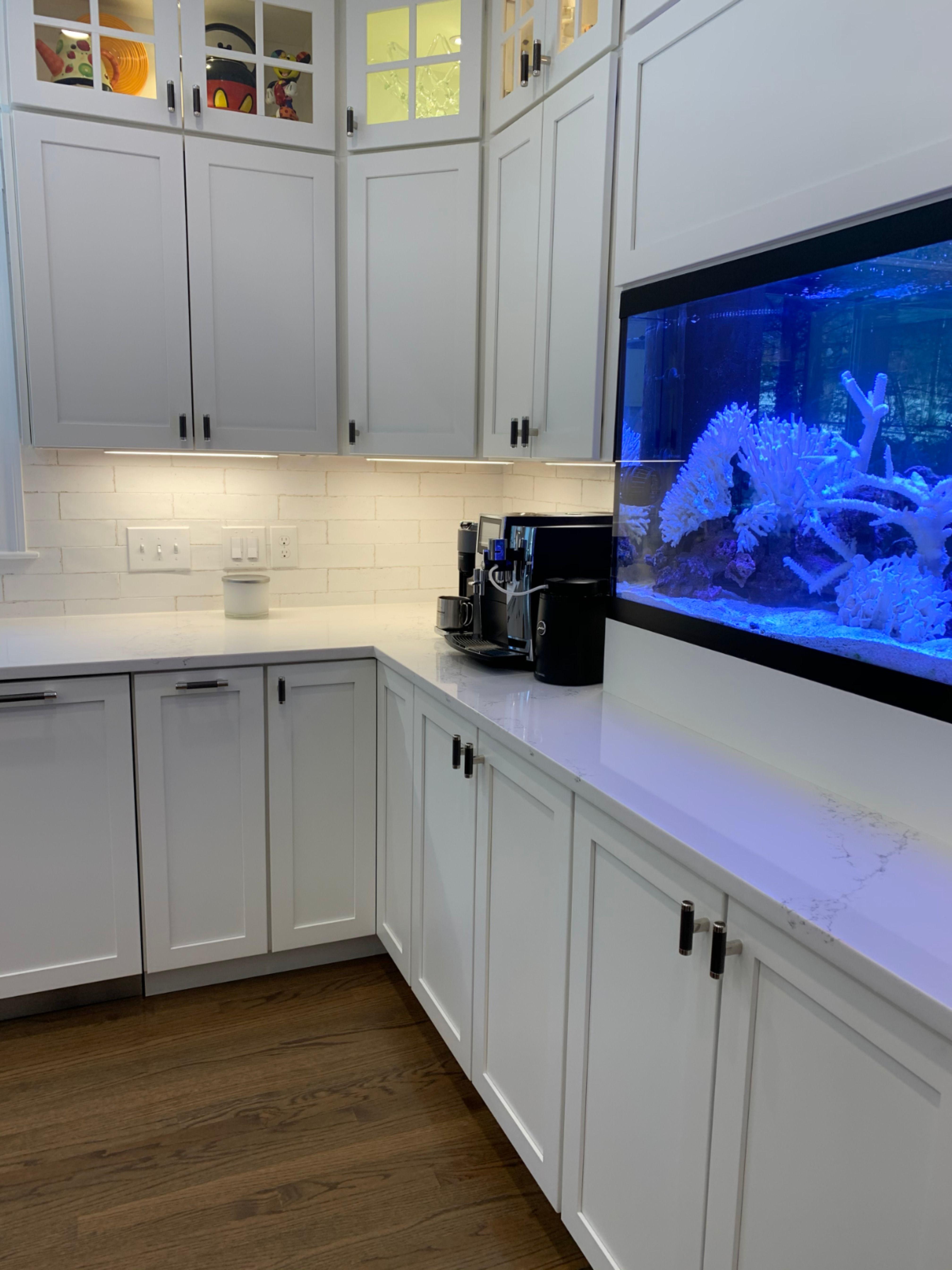 Kitchen Cabinets Kitchen Addition Kitchen Design Kitchen