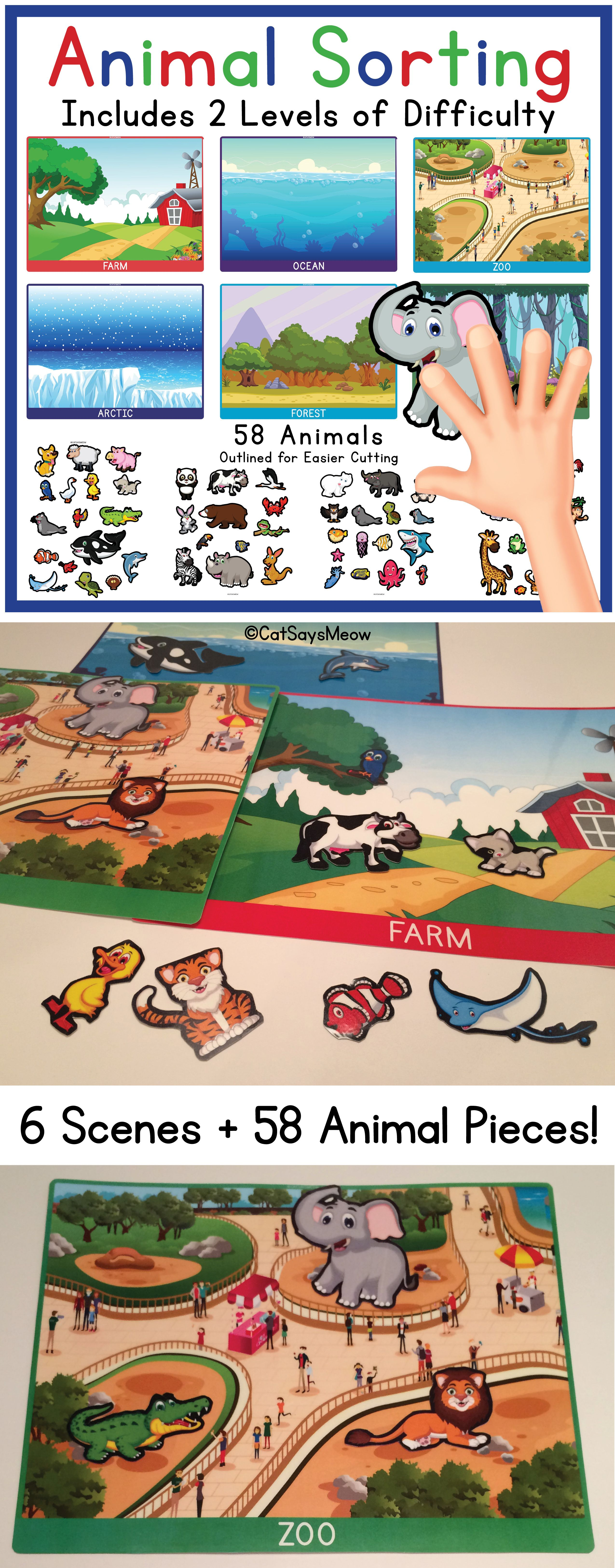 Animal Sorting Categories 2 Levels Of Difficulty Zoo