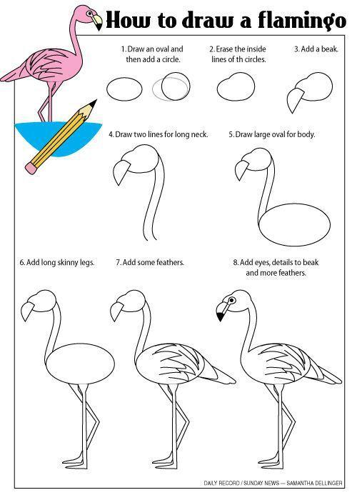 how to draw a flamingo comment dessiner un flamant rose. Black Bedroom Furniture Sets. Home Design Ideas