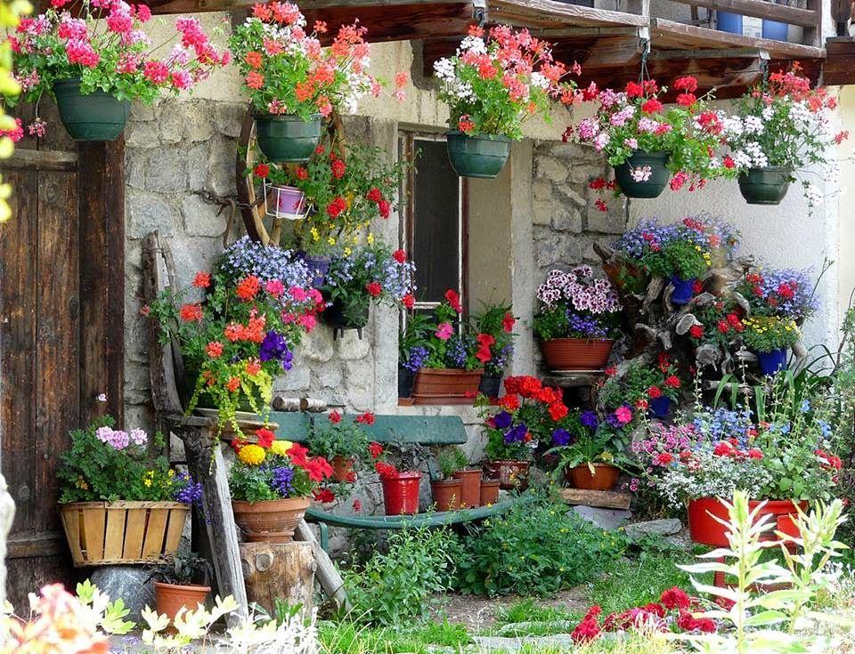 Maison Fleuri Jardin Romantique Jardinieres Aux Fenetres Fleurs