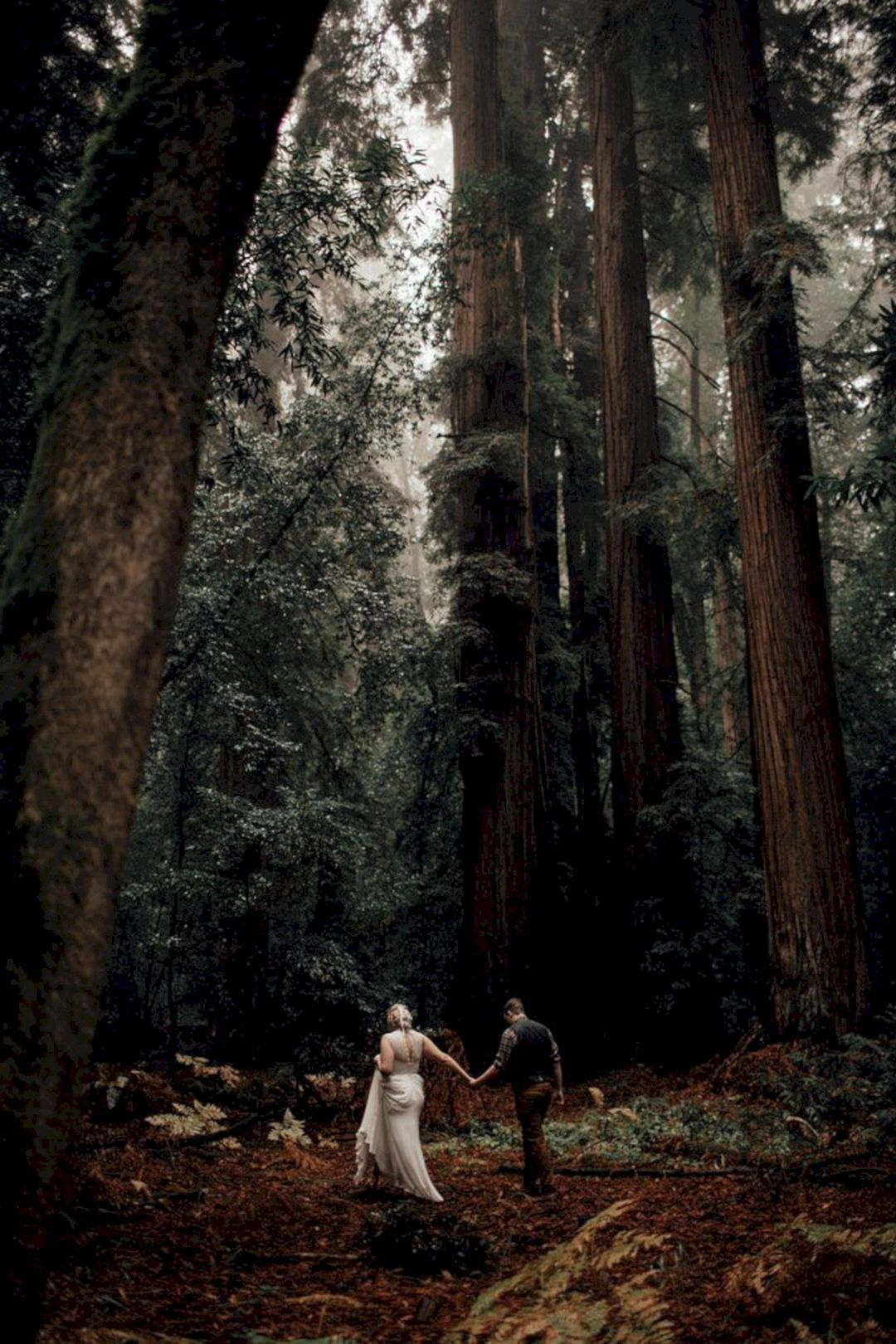 20+ Incredible Redwood Forest Wedding Ideas For Your Romantic Moment #weddingideas