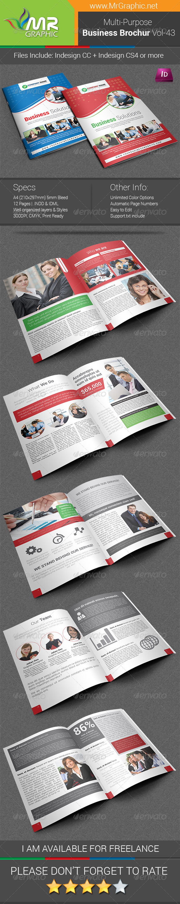 Multipurpose Business Brochure Template Vol-43