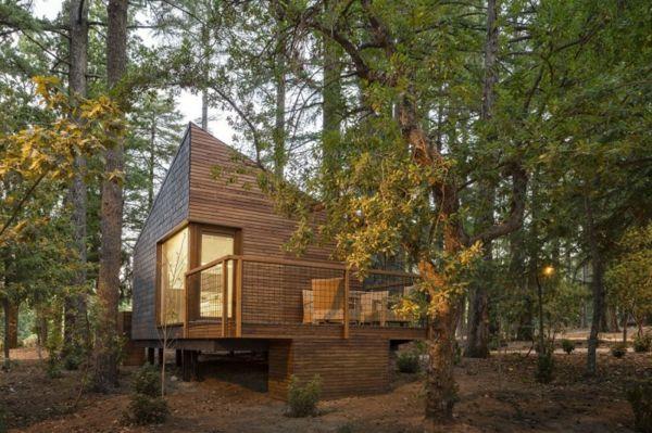 La Maison En Bois Style Chalet Futuriste Dans La Foret