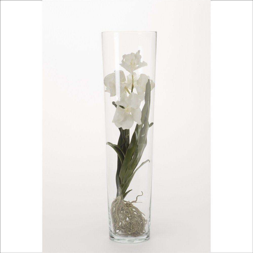 orchidee vanda blanc dans vase transparent h 70 cm vanda pinterest. Black Bedroom Furniture Sets. Home Design Ideas