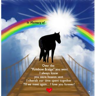 A Personalized Horse Memorial Rainbowbridge Memorialpoem