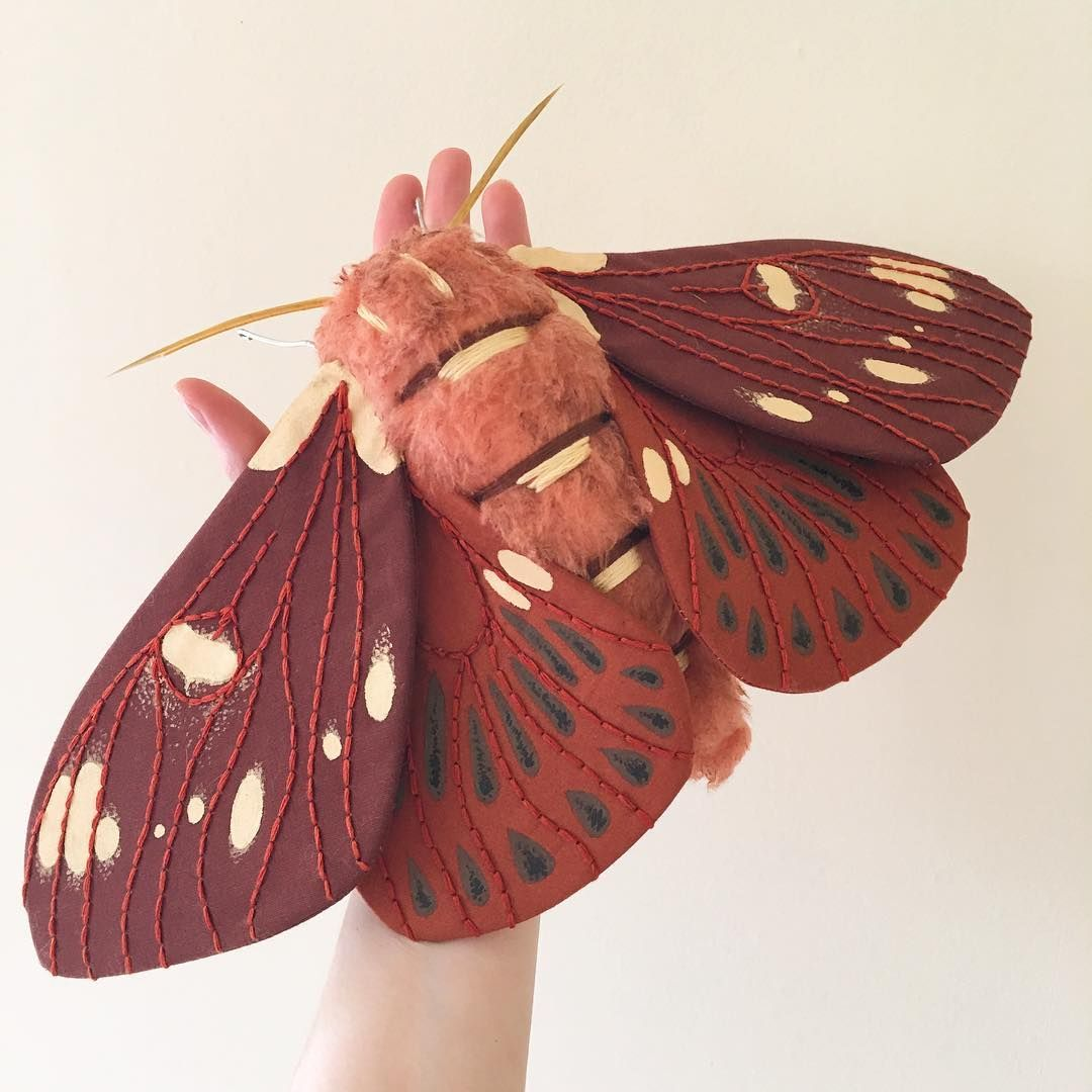 A New Royal Walnut Moth Moth Bug Insect Entomology Sculpture Softsculpture Fiberart Nature Painting Embroidery Moth Art Insect Art Textile Sculpture