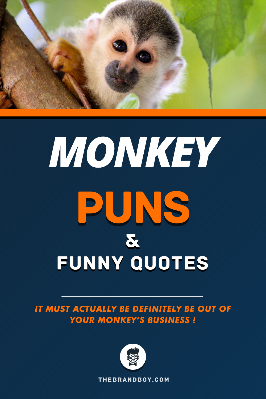 81 Best Monkey Puns Thebrandboy Com Monkey Puns Puns Funny Quotes