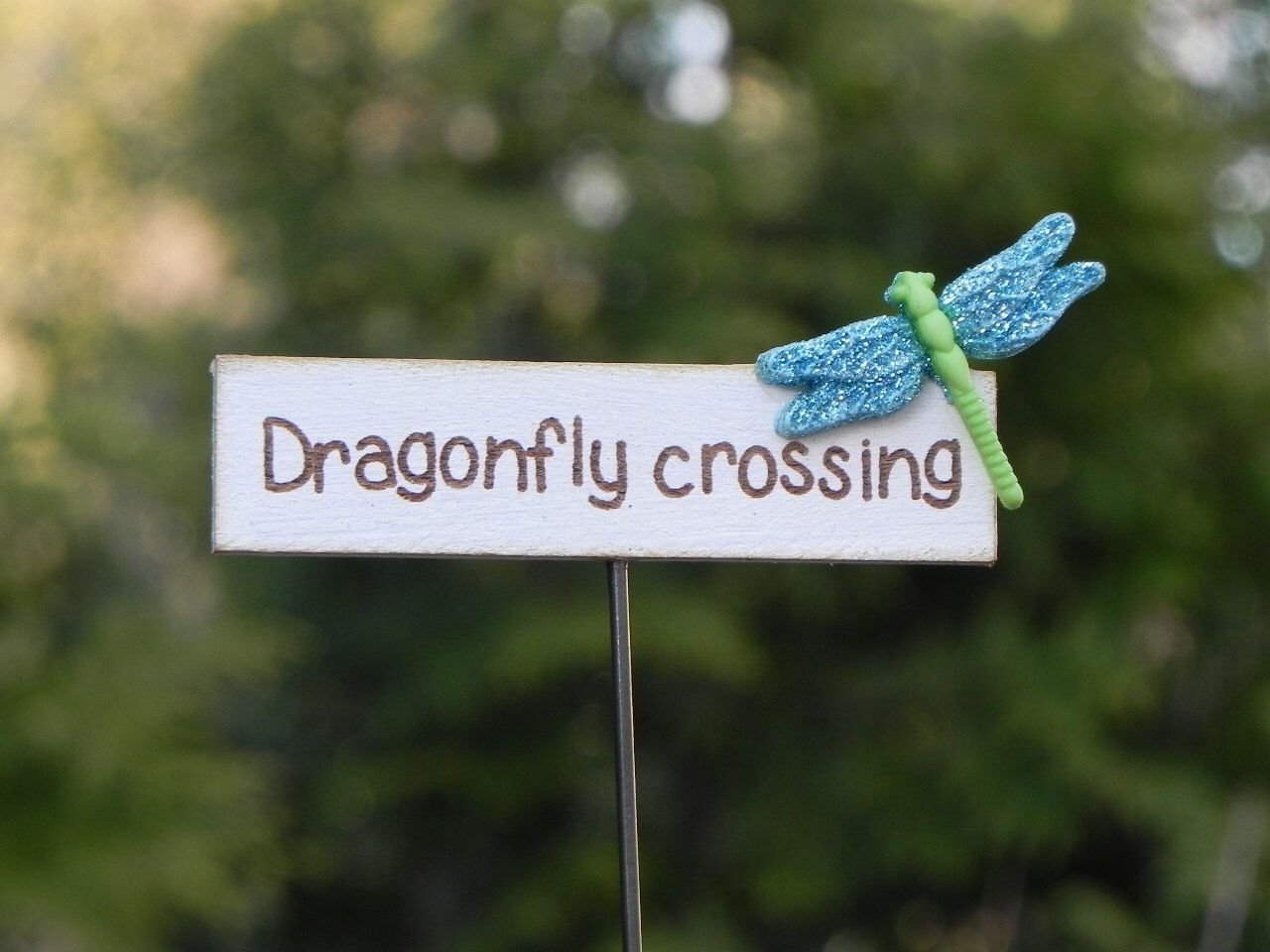 Fairy Garden Accessories Sign Miniature Dragonfly Crossing