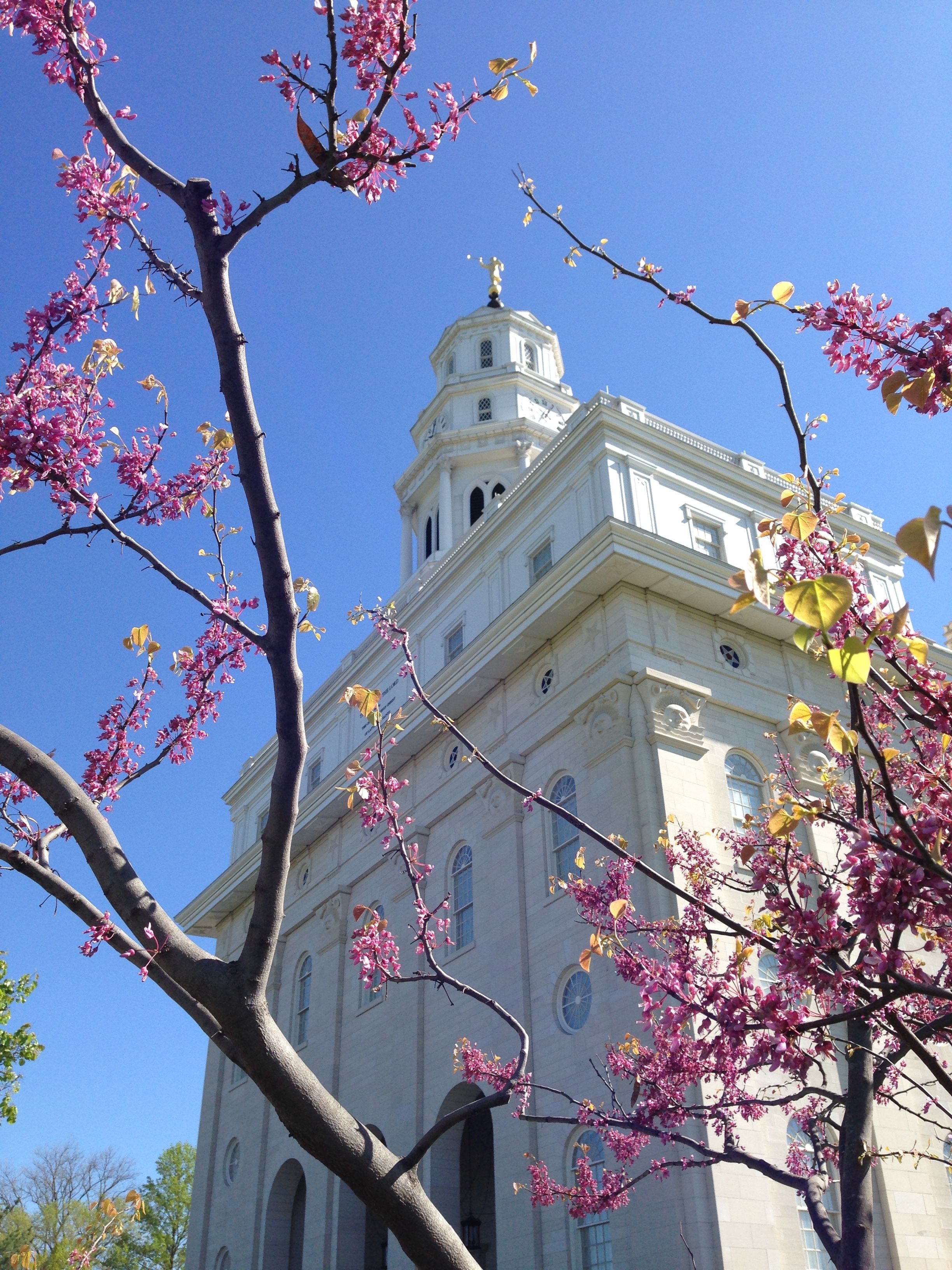 Spring in Nauvoo, Ill.