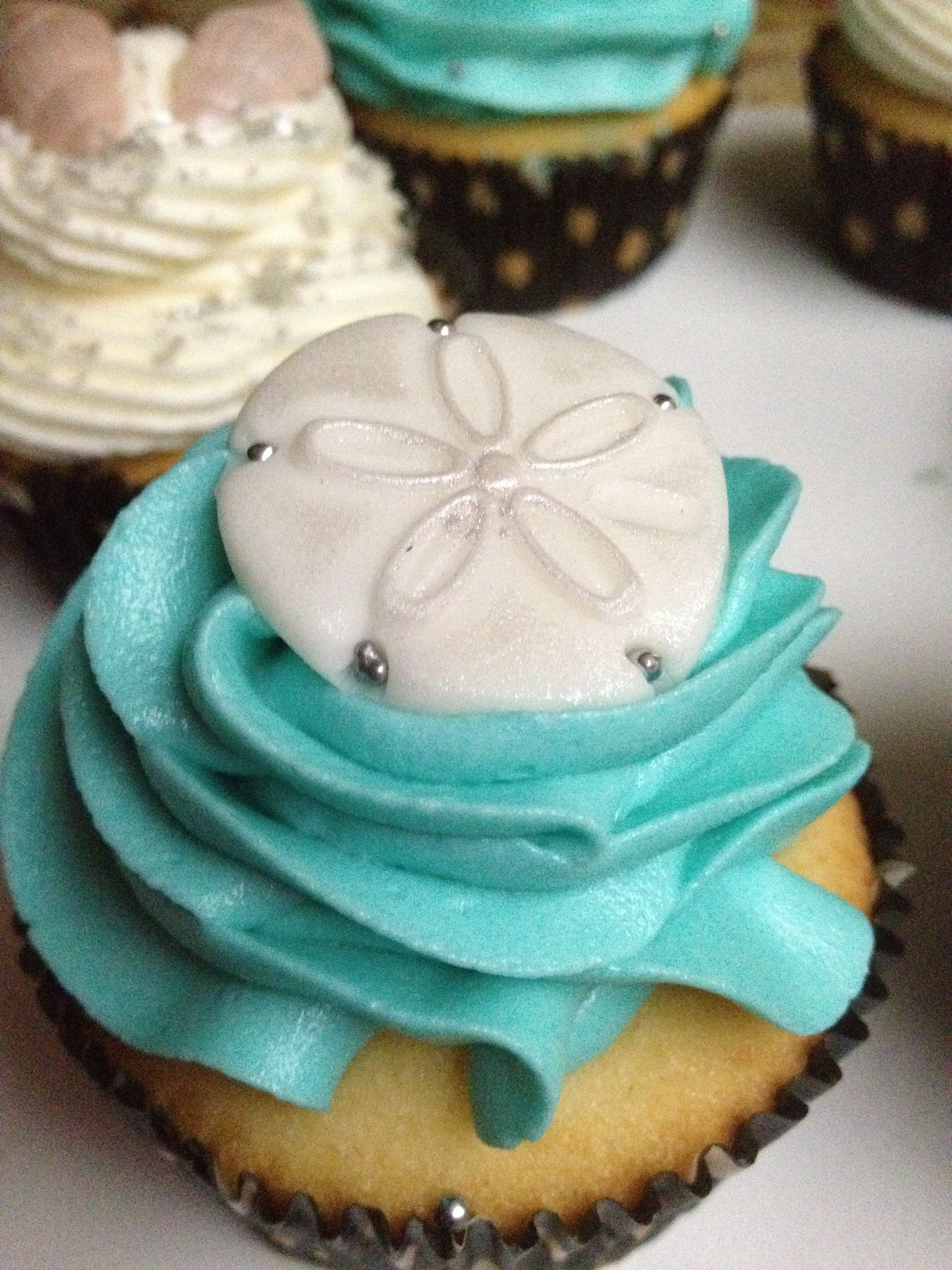 Sand Dollar Beach Theme Cupcakes