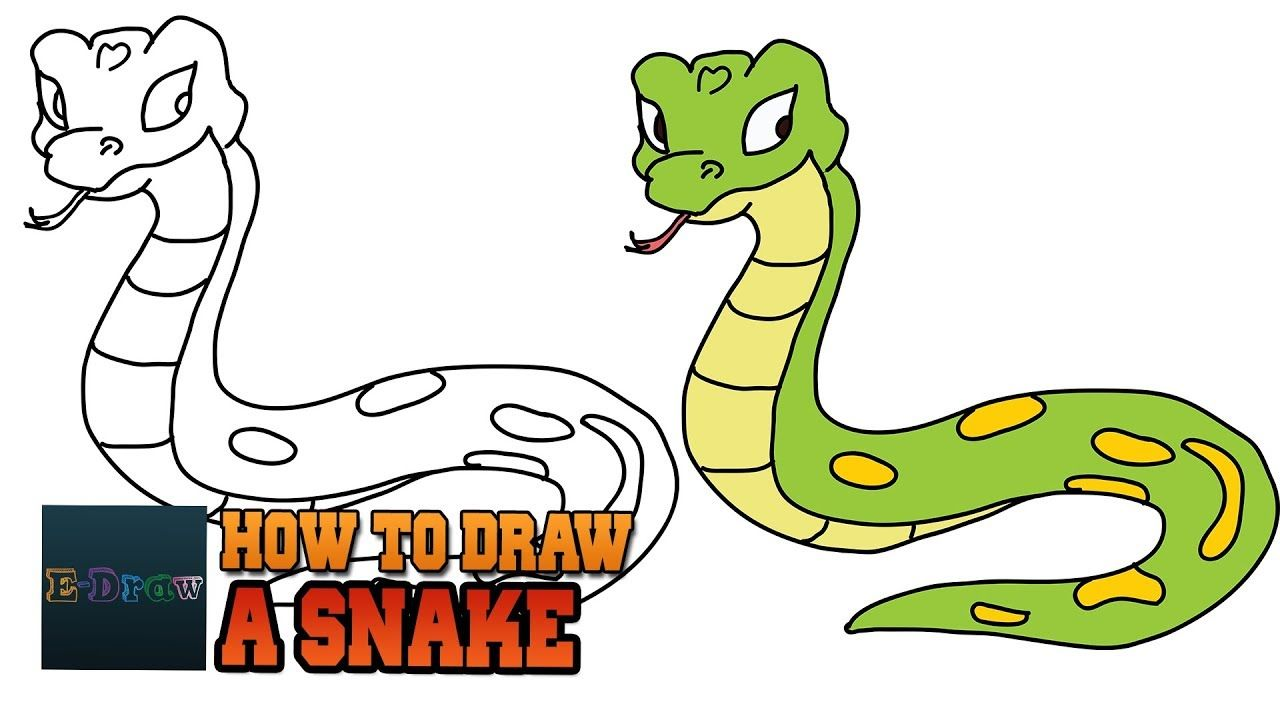 How To Draw A Snake Cartoon Rattlesnake Easy Step By Step Drawing For Ki Snake Drawing Easy Drawings Drawing For Kids