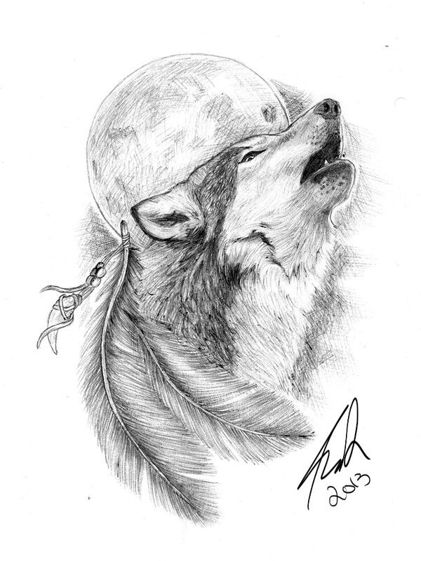 Wolf Moon Feathers Howling Wolf Tattoo Tattoo Design Drawings Animal Tattoos