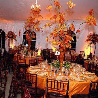 Halloween Wedding Ideas - Great Ideas and Supplies for an Elegant or Wild Halloween Wedding -