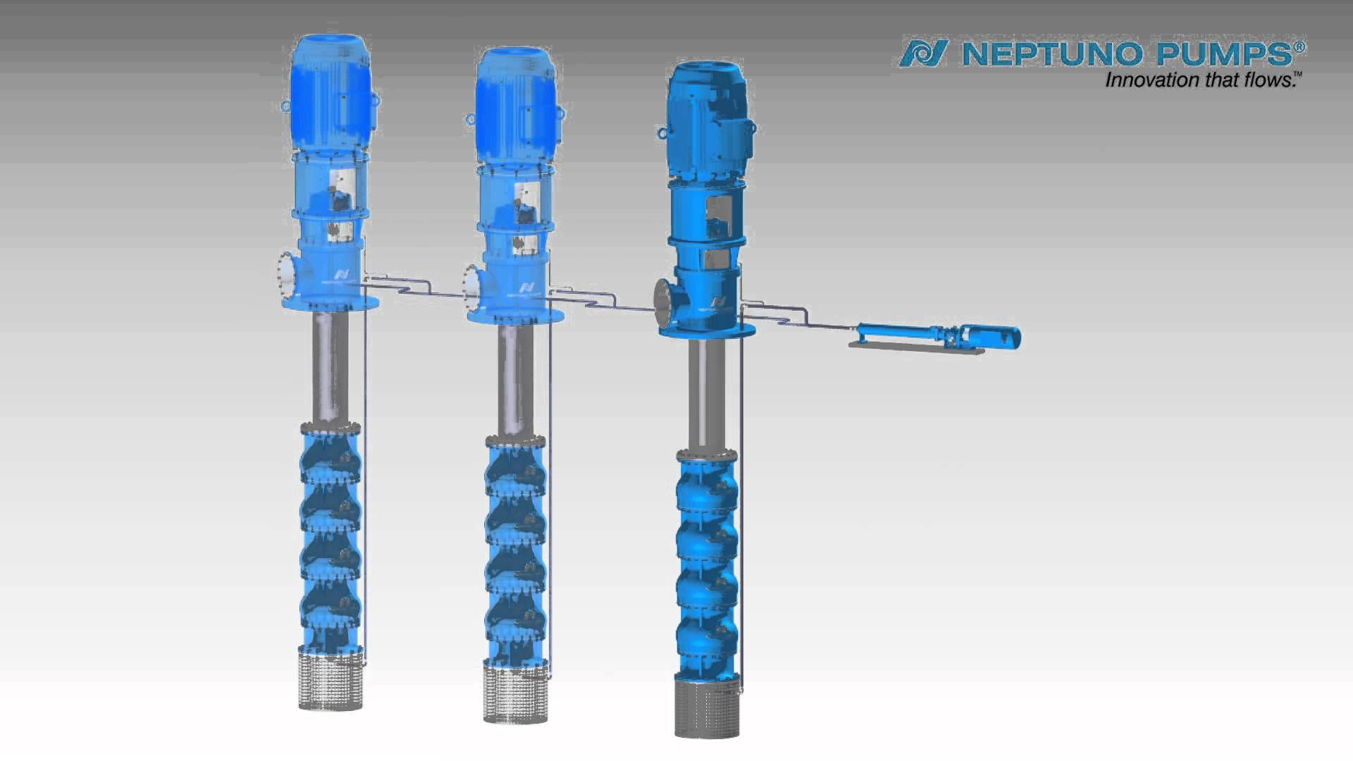 Check how does a Neptuno Pumps Vertical Turbine Pump Enclosed