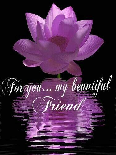 For You My Beautiful Friend Friendship Quote Flower Poem