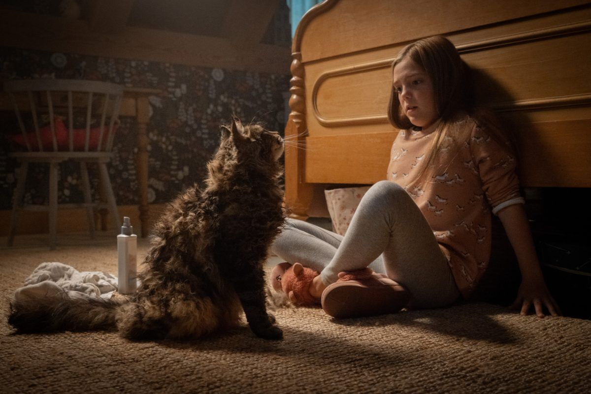 Pet Sematary USA, 2019 now with 20 reviews and 'Hug