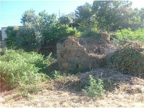 Pedrógão Pequeno, Sertã ID: 122651009-156 ruin with 400m2 of land 6,000€ email lbeale@remax.pt for more information and photos