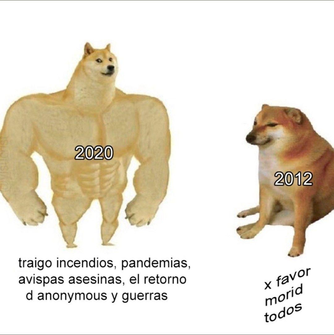 Pin De Macri En Memes Xd Memes Divertidos Memes Memes Comicos