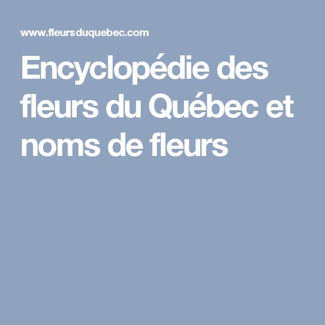 Encyclopédie des fleurs du Québec et noms de fleurs