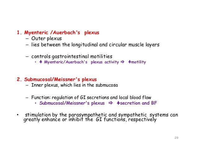 Meissner\'s plexus) 28; 29. 1.   Anatomy   Pinterest