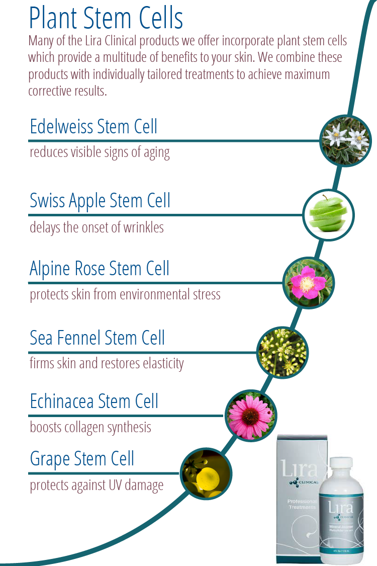 Find Out More About The Plant Stem Cells Use In Our Product Line By Lira Clinical Skin Care Clinic Massage For Men Esthetics